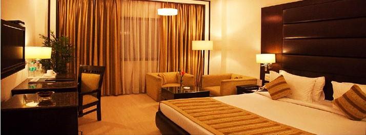 Hotel Shanti Palace - New Delhi 06