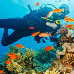 Best Scuba diving in Andaman and Nicobar beach