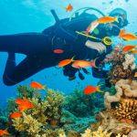 Best Scuba diving in Andaman and Nicobar beach
